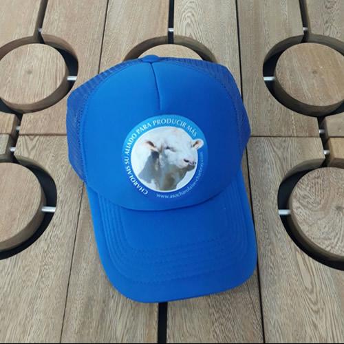 gorra-azul-asocharolais